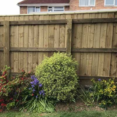 Feather Board Fencing Plymouth